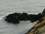 pdv-20081110-0054